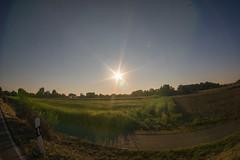 Sunset flare (SpotShot) Tags: sony a7 ilce7 sonya7 zenitar 16mm f28 16 zenitar16mmf28 fisheye sun flare sonne