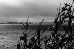 Ciudad escondida (julyyale) Tags: negro bw canon mar blancoynegro monocromo puertomadryn chubut escondida ciudad sea