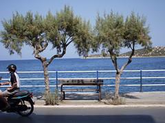 The Empty Bench. (Neal.) Tags: bench 8 crete greece agios nikolaos easter empty sun sea trees scooter man