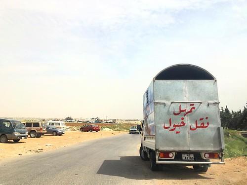الخيول تحب خط الرقعة! #arabiccalligraphy #foundkhtt
