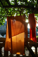 Kesa (monk clothes) cloth, Battambang, Cambodia 1 (Alex_Saurel) Tags: detail asia culture portray orientation tradition photoreport plantaille religion posing buddhist day reportage travel portrait portraiture traditional bouddhisme photospecs imagetype vertical fullframe cambodge photojournalism archicategory scans pose pleinformat halfbody buddhism drape time photoreportage stockcategories sony50mmf14sal50f14