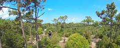ExploraParc_G0090343 (Explora Parc) Tags: saintjeandemonts accrobranche loisirs forêt des pays de monts