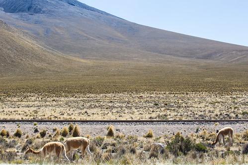 Peru_BasvanOortHR-96
