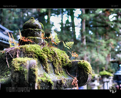 Moss Magic (tomraven) Tags: stupa moss light booked nikko nikkoisnippon age ageless focus japan temple tomraveninjapan aravenimage tomraven q22017 sigma sdquattro