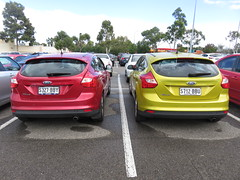 Fraternal Ford Focus Twins! (RS 1990) Tags: teatreegully adelaide southaustralia thursday 30th march 2017 ford focus fraternal twins cars