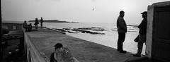 (Paysage du temps) Tags: 2017 20170320c fp4 film hasselblad hasselblad45mm ilford xpan maroc morocco essaouira port harbour pêche fishing pécheurs fishers