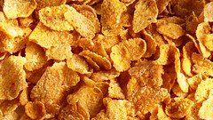 Corn Flakes (LalanAgriExports) Tags: cornflakes cornflakesbenefits cornflakesrecipe cornflakeshealthbenefits cornflakesbeneficialforstomach cornflakesmilk cornflakeschocolate cornflakesusage
