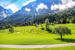 First_19Aug16_105940_44_6D-2 (AusKen) Tags: switzerland grindelwald bern ch