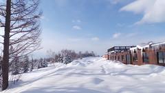 Niseko, Hokkaido, Japan, Hilton Ski Resort Area (mintsanddreams) Tags: hilton resort ski skiing snowboarding niseko hokkaido japan area snow snowing trees base
