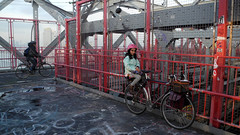 La petite passagère (Shu-Sin) Tags: girl bicycle commute pink helmet front bags koga miyata williamsburg bridge passenger seat graffiti new york city nyc