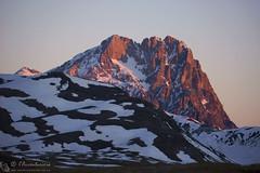 Corno Grande all'alba (EmozionInUnClick - l'Avventuriero's photos) Tags: cornogrande gransasso alba montagna