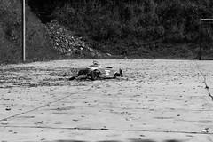Bairro República JM - Wir Caetano - 08 04 2017 (4) (dabliê texto imagem - Comunicação Visual e Jorn) Tags: bairro república monlevade carro brinquedo
