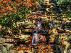 Japanese Maple Waterfall (clarkcg photography) Tags: waterfall rocks japanesemaple firered stream park brights shadows hdr flickrfriday saturation color saturatedsaturday landscape saturdaylandscape7dwf 7dwf flfrok