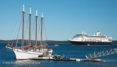 How do you sail ? (RichHaig) Tags: cruiseship landscape margarettodd acadianationalpark me mdi richhaig maine gitzotripod atlanticocean hollandamericaline veendam sailboat nikonafsnikkor2412014ged water nikond800 barharbor