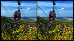 Teleferic near Thale 3-D / CrossEye / Stereoscopy / HDR / Raw (Stereotron) Tags: sachsenanhalt saxonyanhalt harz mountains gebirge teleferic tourism ropeway passenger cable lookout europe germany crosseye crosseyed crossview xview cross eye pair freeview sidebyside sbs kreuzblick 3d 3dphoto 3dstereo 3rddimension spatial stereo stereo3d stereophoto stereophotography stereoscopic stereoscopy stereotron threedimensional stereoview stereophotomaker stereophotograph 3dpicture 3dglasses 3dimage twin canon eos 550d yongnuo radio transmitter remote control synchron kitlens 1855mm tonemapping hdr hdri raw ostfalen ostfalia hardt hart hercynia harzgau