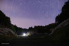 春深し夜 さ (suka0421) Tags: 豊田市上中町 しだれ桃 春 星景 愛知県 night spring art20mm sigma