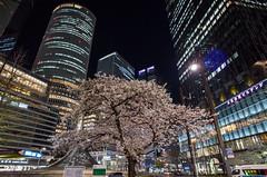 in front of Nagoya Terminal Station (kinpi3) Tags: 名古屋 japan nagoya night cityscape ricoh gr meieki