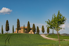 A9904812_s (AndiP66) Tags: agriturismoicipressini agriturismo icipressini pienza siena sanquiricodorcia valledorcia valle dorcia toscana tuscany italien italy sony alpha sonyalpha 99markii 99ii 99m2 a99ii ilca99m2 slta99ii sigma sigma24105mmf4dghsmart sigma24105mm 24105mm art amount andreaspeters
