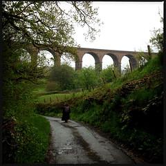 Lowgill Viaduct (Fotorob) Tags: verenigdkoninkrijk engeland lowydc victorian spoorbrug wegenwaterbouwkwerken brug cumbria erringtonjohn lockejoseph architecture stijl england margit architectura architectuur beckfoot