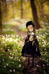 walking in light (koroa) Tags: bjd leekeworld noella forest doll feeriedoll