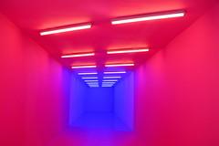 A Wall Is Just A Wall .... The Power Plant / Art Exhibit Gallery .... Toronto, Ontario (Greg's Southern Ontario (catching Up Slowly)) Tags: pink blue nikon nikond3200 fluorescentlight illumination artwork publicartwork hallway awallisjustawall thepowerplant kapwanikiwanga torontoist