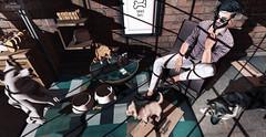 GOOD DOG (Joseph Crumb // Hit Fashion) Tags: cosmopolitan deadwool doux kalback kraftwork menonlymonthly mom onegrid pumpkin tmd