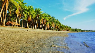 Philippines: A must visit country! Come, it's more fun in the Philippines!!!   #Philippines #nature #beauty #beach #tropical #summer #photography #hobby #shot #sun #sky #coconut
