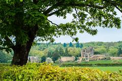 Bothal Castle (bobf62) Tags: old castle history landscape 50mm nikon historical bothal d3200