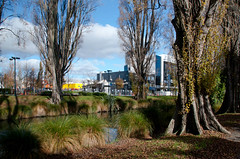 ACC Building Gone (Jocey K) Tags: city autumn trees newzealand christchurch sky plants tree leaves architecture clouds river shadows may demolition nz trunk cbd avon
