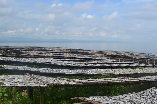 Fish drying, Miputak, Dipolog City, Philippines. Photo by Sarah Esguerra, 2013.