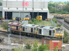 60061 60033 60003 & 60045 at Toton TMD / Yard 08/06/2013 (37686) Tags: brush class tug 60 toton