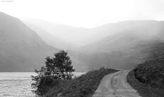 (xBCFC) Tags: fog scotland blackwhite angus lee loch glenesk