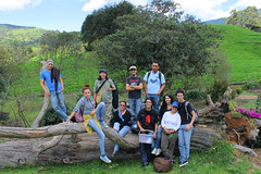 El grupo2 (Caro-La Mustache) Tags: road travel flower tree green nature fire cow farm paisaje vaca finca