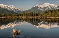 Vermilion Lakes Reflection (Jeff Clow) Tags: mountain lake canada reflection alberta banffnationalpark canadianrockies vermillionlakes vermilionlakes tpslandscape