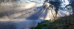 Guy Fawkes River Sunrise ........ (John Finnan) Tags: panorama mist fog sunrise australia nsw sunrays newenglandtablelands guyfawkesriver johnfinnan