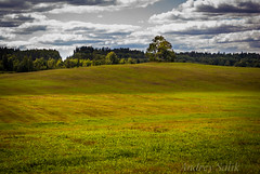 on Explore !! idyllic rural landscape. field, forest, clouds Родные просторы. (andrey.salikov) Tags: gauja landscape summer upe изумительно красиво утес звартес great shot beautiful explore родные просторы fantastic image latvia latvian latvija light lv жж 2013 пленер туризм tourism travel europe trip отпуск architecture history morning ieriki cesurajons nice scenery photos wonderful fall forest dreams lovely miracle field autumn trees nikond60 180550mmf3556 nikon d60 scene