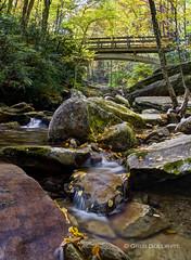 Boone Fork (Greg Dollyhite) Tags: blue creek nikon greg footbridge north fork ridge parkway carolina boone wnc d7100 dollyhite