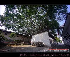 . ( Guess TSAI) Tags: sony voigtlander 7 wideangle 12mm alpha f56 ultra asph heliar l39 1256