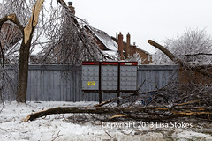 Peace Valley Crescent (Lisa-S) Tags: winter ontario canada storm ice mailbox post lisas super tragedy damaged brampton 3953 copyright2013lisastokes