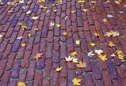 deanhochman bricks brickstreet leaves autumn walking exercise