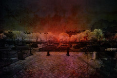 roundabout (greg westfall.) Tags: blue trees red sky horses horse dog chien white black paris france building cars texture ir bricks roundabout arc infrared automobiles triomph 52weeks gregwestfall gregwestfallphotography