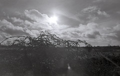 Wotton Under-Edge (benbrooks1111) Tags: sun abstract film field modern 35mm scenery adventure bonfire burnt lensflare flare barbedwire barbs society barbed remains charred wotton wottonunderedge