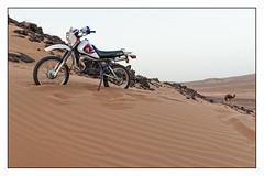 Horsepower (toletoletole (www.levold.de/photosphere)) Tags: rocks desert dune motorbike morocco marokko dne wste felsen motorrad dromedar
