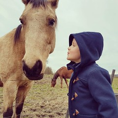 Theo in love with horses #horse #chevaux #nature #countryside #child #theo (Ben Heine) Tags: benheinephotography photography composition light smartphone nature landscape beauty beautiful photo photographie art ifttt instagram benheine horizon