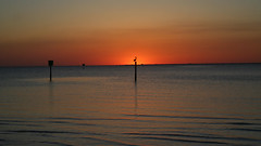Pelican Sunset (AngelaC2009***) Tags: 2017 winter february florida tampabay littleharbor ruskin sunset bird pelican beach canoneosdigitalrebelxt