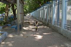 Left behind (sanat_das) Tags: kolkata southernavenue sidewalk child boy running crying d800 50mm