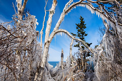 fundy frame (Port View) Tags: fujixe2 ogilvie novascotia canada cans2s 2017 winter ice icicles blue sky clouds birch trees spruce fundy fundyshore bayoffundy