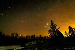 Flaming Night... (mc_icedog) Tags: astrophotography nature nightfall wide angle depth field cold sky forest stars trees tripod planets horizon glow darkness landscape long exposure