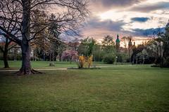 Sunset in the Park (Erwin Burgstaller) Tags: stadtpark sunset park graz steiermark österreich