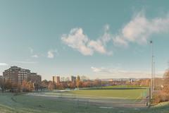 Oslo #12 (Chris Bonnie) Tags: oslo norway explore sony alpha mirrorless a7rii a7r2 carlzeiss football pitch turf grass